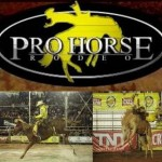 Montaria em cavalos – Curso de Bareback e Sela Americana em Barretos. Os interessados em conhecer um pouco mais as ...