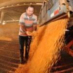 Mesmo longe de competir com a enorme produção de milho dos Estados Unidos, o Brasil está próximo de desbancar a ...