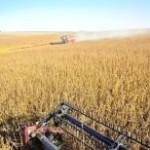 Os financiamentos para a agricultura empresarial somaram R$ 84,9 bilhões entre julho de 2012 e março de 2013, o que ...