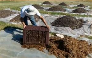 A compostagem é um processo natural onde os resíduos da propriedade passam por uma transformação biológica e tornam-se fertilizantes orgânicos ou húmus. Neste processo biológico há uma decomposição da matéria orgânica contida em restos de origem animal ou vegetal. O ...