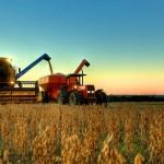 Segundo levantamento da Assessoria de Gestão Estratégica do Ministério da Agricultura, Pecuária e Abastecimento (AGE/Mapa), o Produto Interno Bruto (PIB) ...