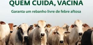 O Instituto Mineiro de Agropecuária (IMA) realizará durante o mês de junho, em todo o Estado, um monitoramento sorológico de circulação do vírus da febre aftosa. O objetivo é apoiar a certificação de ausência de circulação viral em Minas Gerais, ...