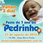 No próximo domingo, dia 31 de agosto, acontecerá a festa de aniversário do menino Pedrinho. O evento foi organizado para que todos possam se divertir e ter a oportunidade de colaborar para o tratamento do menino. Pedrinho é um lindo ...