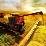 O Ministério da Agricultura, Pecuária e Abastecimento (Mapa) e a Companhia Nacional de Abastecimento (Conab) anunciaram nesta quinta-feira (7) os números da produção de grãos referentes ao 11º levantamento da safra 2013/2014. A expectativa é de que o Brasil alcance ...