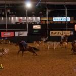 Aconteceu ontem, quinta-feira, 18/09, a primeira competição eliminatória do Team Penning, no Jaguariúna Rodeo Festival. O evento contou com o total de 37 competidores organizados em 20 trios. O melhor tempo da noite foi dos competidores Grilo, Vinicius e Maicon, ...