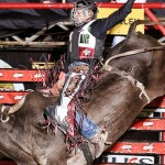 Etapa de Leme (SP) Considerado um dos competidores mais constantes do esporte de montaria em touros, Edimundo Gomes, de Atibaia ...
