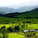 Estudo realizado pela Assessoria de Gestão Estratégica do Ministério da Agricultura, Pecuária e Abastecimento (AGE/Mapa), em conjunto com pesquisador da ...