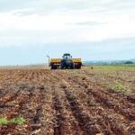 Vazio Sanitário começa nesta quarta-feira em Mato Grosso