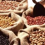 Brasil quer reduzir a zero tarifa de importação de feijão, China deverá ser maior beneficiário
