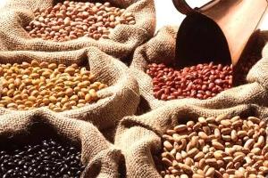 Redução da Tarifa de importação de feijão