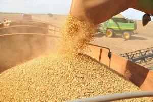 Preço da soja em julho