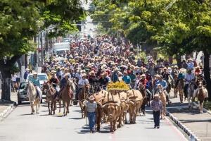 Fé e Devoção: Desfile de Cavaleiros reúne milhares de participantes na manhã de domingo em Sumaré