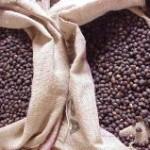 A exportação brasileira de café em novembro passado (20 dias úteis) alcançou 2,712 milhões de sacas de 60 quilos, o ...