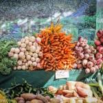 O Ministério da Agricultura, Pecuária e Abastecimento (Mapa), por meio da Secretaria de Desenvolvimento Agropecuário e Cooperativismo (SDC), e o ...