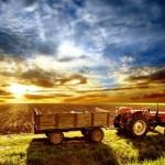 O PIB (Produto Interno Bruto) da agropecuária recuou 3,5% de julho a setembro contra o segundo trimestre de 2013. Os ...