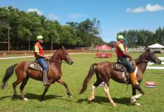 O programa Mangalarga Marchador TV fez uma reapresentação das melhores reportagens de 2013. Vale a pena relembrar a história do pequeno Pedro Henrique, que com paralisia cerebral, usa a equoterapia para melhorar a qualidade de vida. Fonte: Canal Rural