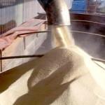 Confira os índices do Boletim Agronegócio.net desta terça-feira, 14 de janeiro de 2014. Açúcar Após o período de férias coletivas, ...