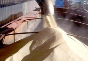 A produção de açúcar da Índia no atual ano comercial deverá cair 5% ante a previsão anterior, devido a chuvas intensas nas principais áreas produtoras, e também pelo desvio de parte da cana-de-açúcar para a produção de açúcar mascavo, disse ...