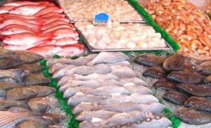 O Setor de pescados brasileiro já está se preparando para a Expo Milão 2015. A feira acontece entre maio e outubro do ano que vem e vai reunir representantes de 142 países. O governo brasileiro espera que o evento ajude ...