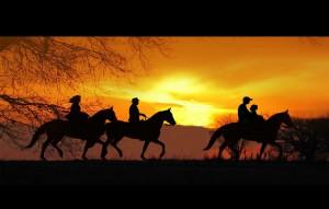 O Departamento de Exposições da Associação Brasileira dos Criadores de Cavalos da Raça Mangalarga (ABCCRM) está recebendo inscrições para a Exposição Mangalarga de Vitória da Conquista. Para obter a ficha de inscrição do evento, que acontece nos dias 28 e ...