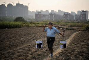 A Comissão Nacional de Desenvolvimento e Reforma da China declarou ontem, em seu relatório de trabalho para 2014, que garantir a segurança alimentar e a proteção do meio ambiente estão entre as principais prioridades da China neste ano. A comissão ...