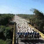 Confira os índices do BoletimAgronegócio.netdesta sexta-feira, 07 de março 2014. Boi O mercado pecuário começa março com incertezas relacionas à ...