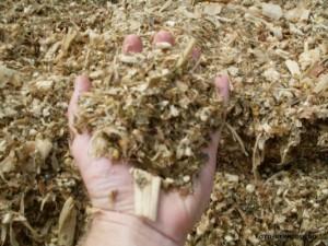 Com previsões de um inverno seco e frio e carência de pasto, alguns produtores investem no armazenamento de comida no silo (silagem) como estratégia alimentar. Quando bem realizada, ela tem valor nutritivo próximo ao da forragem verde. Segundo o zootecnista ...