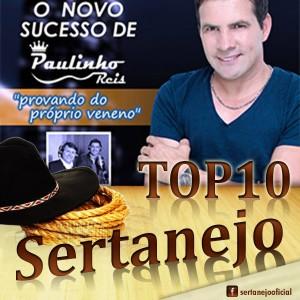 TOP 10 SERTANEJO Fevereiro de 2015 1 – Provando do Próprio Veneno   Paulinho Reis 2 – Pega Eu e ...