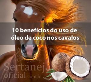 Segue abaixo umalista de 10 benefícios do uso de óleo de coco nos cavalos: 1. Melhora do Intestino – O óleo de coco contém triglicéridos de cadeia média (MCT), que são mais fáceis de digerir, melhor absorção e conversão de ...