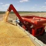 A Safra de grãos 2015_2016 deve ser de 189,3 milhões de toneladas.Do total, a soja representa 95,6 milhões t, e ...