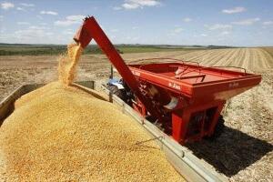 A Safra de grãos 2015_2016 deve ser de 189,3 milhões de toneladas.Do total, a soja representa 95,6 milhões t, e o milho, 69,1 milhões t As condições climáticas nas principais regiões produtoras afetaram a produtividade das lavouras, sobretudo do milho ...