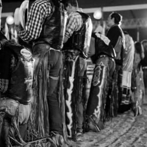 """Projeto """"Rodeio do Bem"""" garante tratamento VIP às tropas e manadas que participam das provas"""