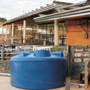 Embrapa lança cartilha sobre o uso de água da chuva na produção animal