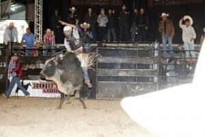 Flash salva Fotógrafo de ser atacado por um touro, confira o vídeo!